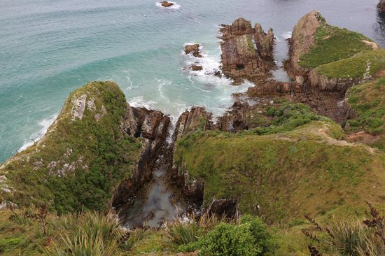 Kenthurst Lodge B & B: Nugget Point