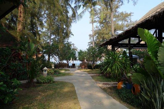 Lanta Castaway Beach Resort: Allée qui mène des chambres à l'espace resto/plage