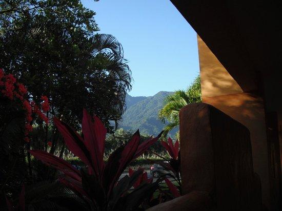 Palma Real Beach Resort & Villas: La montagne est spectaculaire