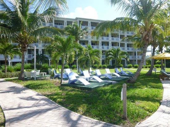 Alexandra Resort : lounge chairs behind resort
