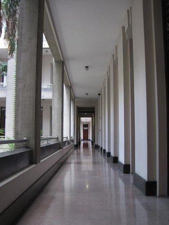 Musée d'Antioquia : Corridor