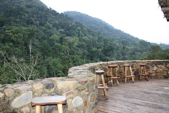Bwindi Impenetrable National Park : Bwindi Forest from Ndego IV