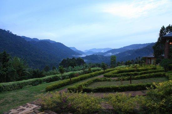 Bwindi Impenetrable National Park : Kabale Terraced Hills near Ndego Gate