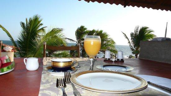 Villa Pelicano Hotel Boutique : ;