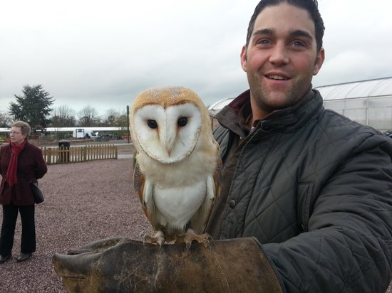Stockley Farm Birds of Prey Centre: Darwin and my husband
