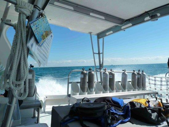 John Pennekamp Coral Reef State Park : Tauchboot