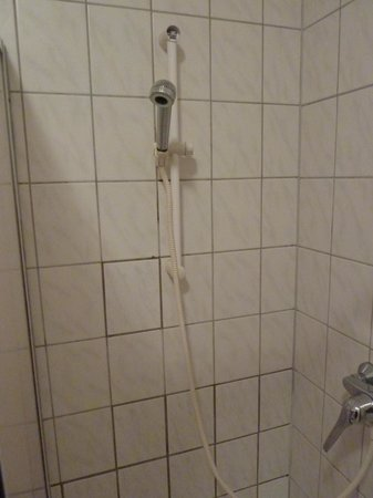 Hotel Waldhaus: Dusche