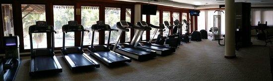 Pulai Springs Resort: Gym