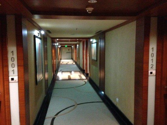 MSR Hotel & Spa Bangalore: Hallway entrance to 10th floor suites