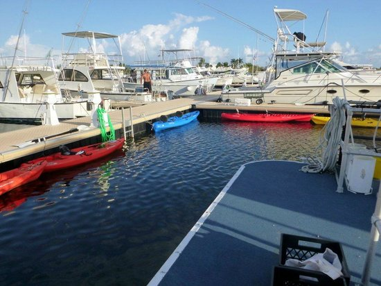 Sea Elements: The yacht club and the kayaks
