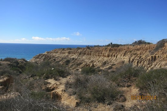 Torrey Pines State Natural Reserve : View from Torrey Pines State Reserve Trail