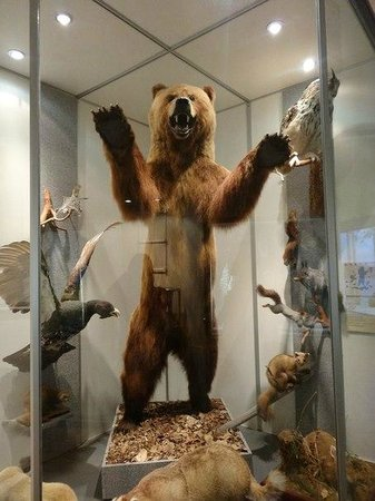 Jekaterinburg, Russland: чучело медведя
