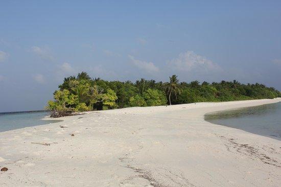 Kuri Inn: spiaggia dell'isola