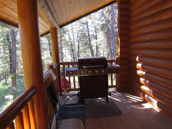 Mueller State Park: The back porch