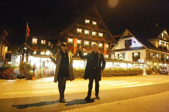 Hotel Chalet Swiss: Вид на отель