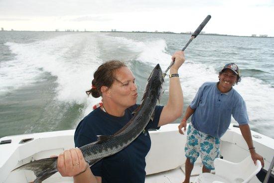 Barracuda Marina : Barracuda