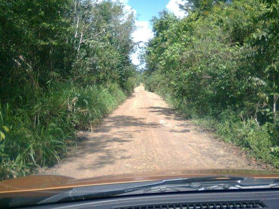 Bacalar Lagoon Resort: Camino al hotel