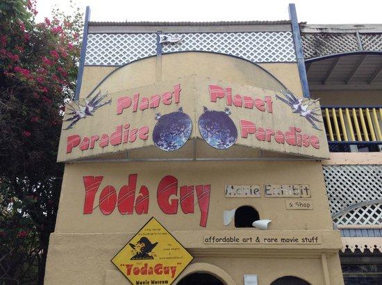 Yoda Guy Movie Exhibit : Yoda Guy