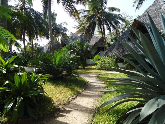 Shambani Cottages : Giardino