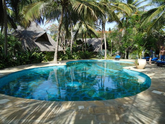 Shambani Cottages: Piscina