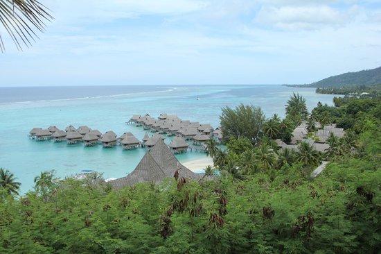 Sofitel Moorea Ia Ora Beach Resort : View