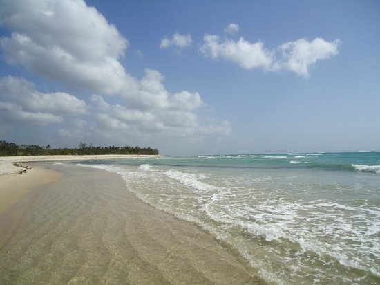 Shambani Cottages: Spaiggia Diani