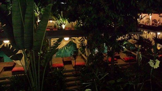 The Plantation: La plantation de nuit !!
