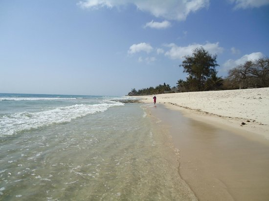 Shambani Cottages: Spiaggia