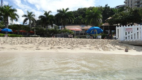 Doctor's Cave Beach: view from the water
