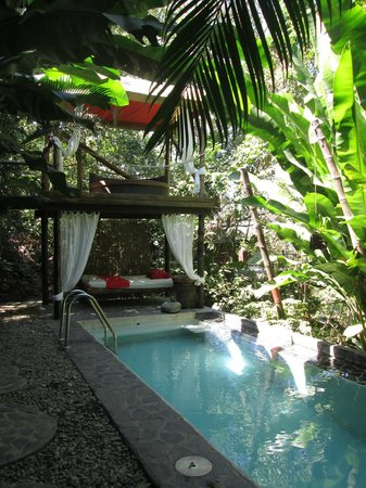 Canaima Chill House : Pool and chill out place