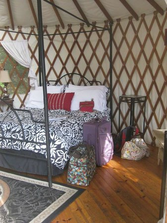 Falling Waters Adventure Resort: Inside Yurt