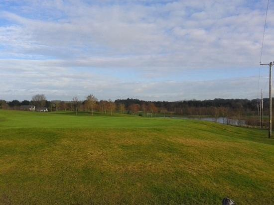 Millicent Golf Club: overlooking 8th green