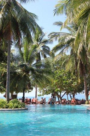 Sand Sea Resort: Piscina 1