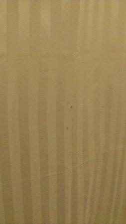 Legian Village Hotel: mold on shower curtain