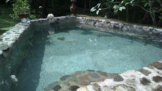 Nypa Style Resort Camiguin: piscina