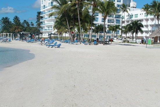 Hamaca Beach Picture Of Be Live Experience Hamaca Garden Boca Chica Tripadvisor