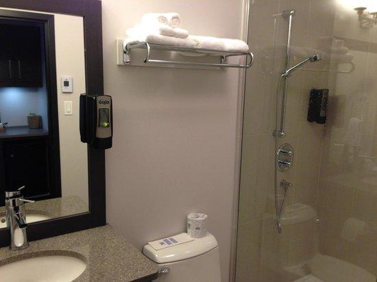 Hotel De La Borealie : average bathroom