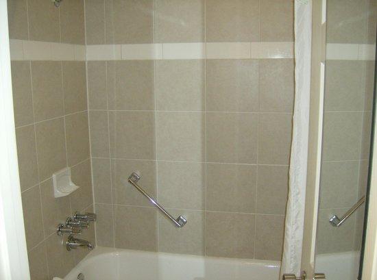 Best Western Hendersonville Inn: bathroom