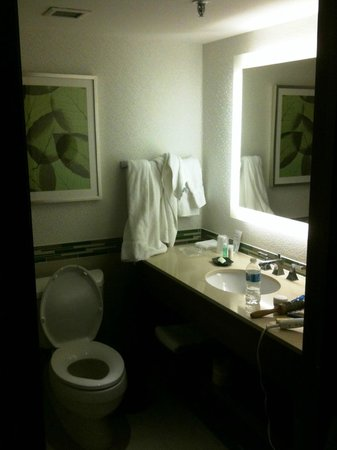 The Westin Ottawa : Bathroom