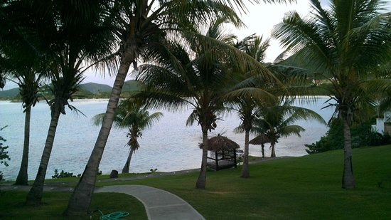 Cocobay Resort : Wonderful landscaping on grounds