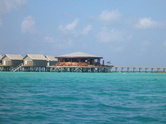 Centara Ras Fushi Resort & Spa Maldives: Viu Bar