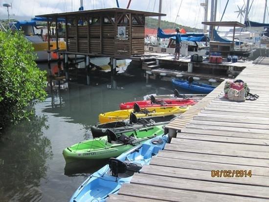 Conservation Kayak: HQ!