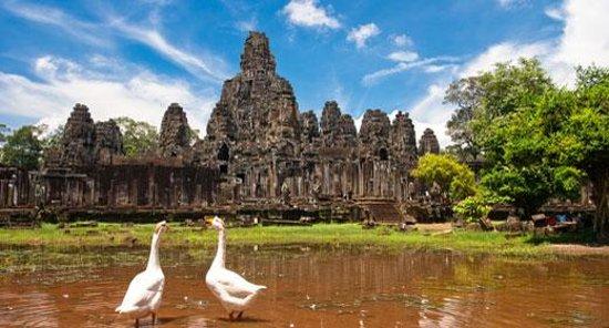 Holystone Angkor Travel&Tours: getlstd_property_photo