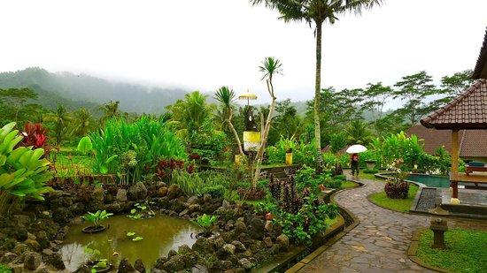 Villa Pelangi Sidemen: Sous la pluie