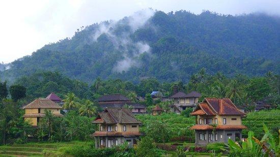 Villa Pelangi Sidemen: Au loin, se détache la brume de la jungle et d'autres hôtels