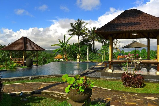 Villa Pelangi Sidemen: La piscine