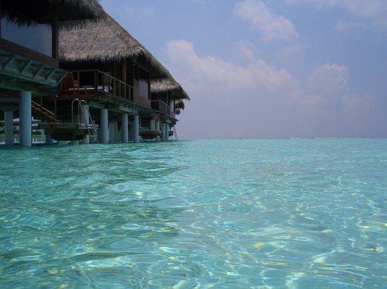 Taj Exotica Resort & Spa: 水上コテージ
