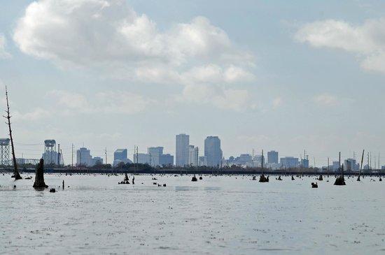 Kayak-iti-Yat Original Kayaking Tours of New Orleans: Skyline of New Orleans from Bayou Bienvenue