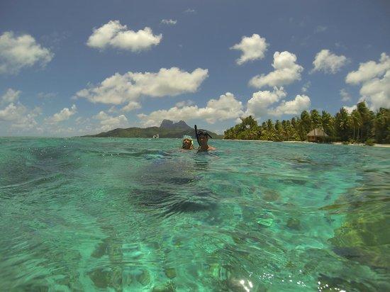 Arrecife del descubrimiento: Mount Otemanu in background