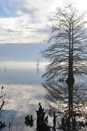 Harris Brake Lake Resort: Scenery